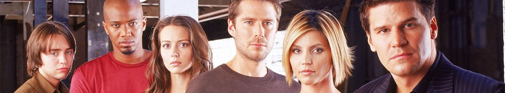 Angel TV Show Banner