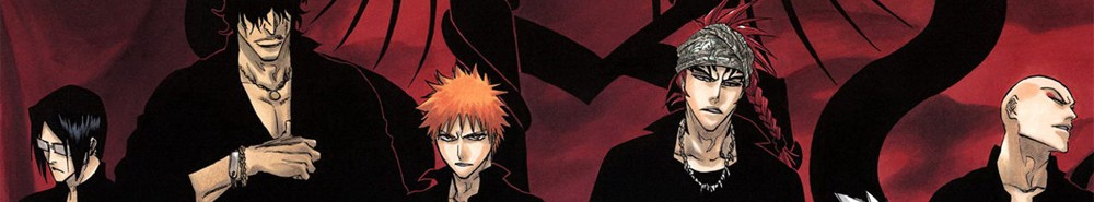 Bleach TV Show Banner