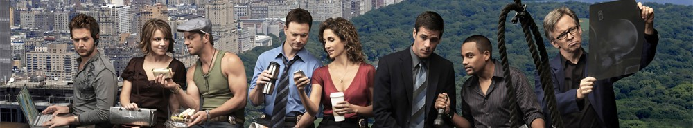 CSI: New York TV Show Banner