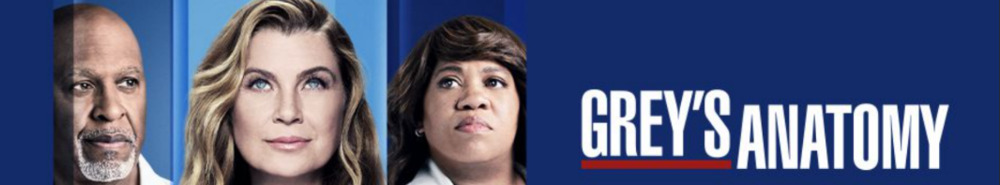 Grey's Anatomy TV Show Banner