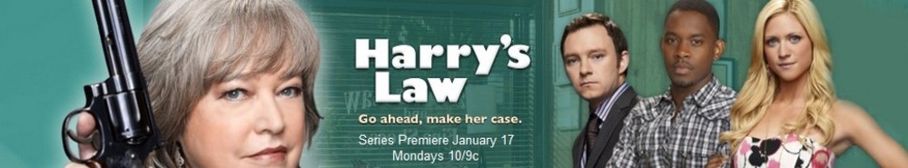 Harry's Law TV Show Banner