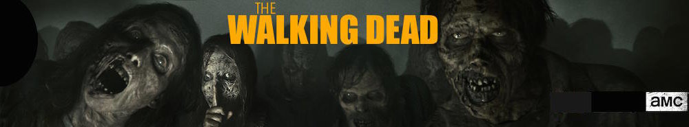 The Walking Dead TV Show Banner