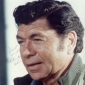 Sheriff Elroy P. Lobo played by Claude Akins