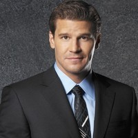 Special Agent Seeley Booth played by david_boreanaz