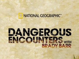 Dangerous Encounters tv show photo