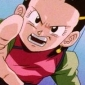 Chi-Chi Dragon Ball GT (Dubbed)