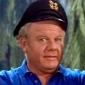 Jonas 'The Skipper' Grumbyplayed by Alan Hale Jr.