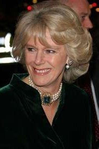 Biography - 02x60 Camilla Parker-Bowles: the Other Woman