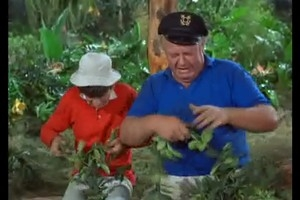 Gilligan's Island - 03x17 Court-Martial