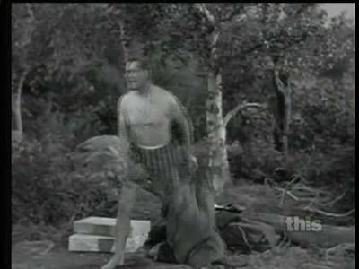 Mister Ed - 05x26 My Horse, the Ranger