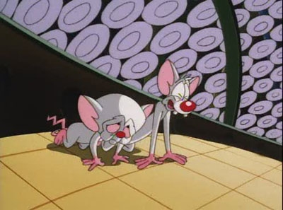Pinky and the Brain - 04x01 Brainwashed (1): Brain, Brain, Go Away