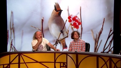 QI (UK) - 10x01 Jargon