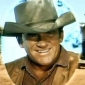 Marshal Matt Dillon played by James Arness