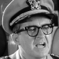 Capt. Wallace B. Binghamtonplayed by Joe Flynn