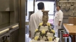 Cake Boss Museum, Mistakes & Mother Mary