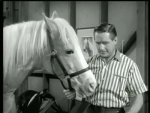 Mister Ed Never Ride Horses