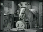 Mister Ed Ed the Sentry