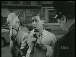 Mister Ed My Horse, the Mailman