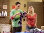 The Big Bang Theory The Bad Fish Paradigm