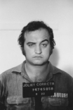 John Belushi person