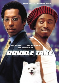 Double Take movie poster