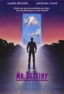 Mr. Destiny movie poster