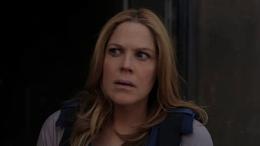 S05E0 Mary McCormack On the Final Season