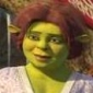Princess Fiona Shrek The Halls