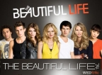 The Beautiful Life: TBL tv show