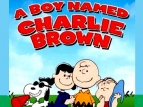 A Boy Named Charlie Brown TV Series