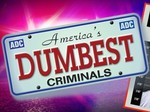 America's Dumbest Criminals tv show photo