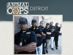 Animal Cops: Detroit TV Series