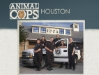 Animal Cops: Houston TV Series