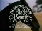 Black Beauty TV Series