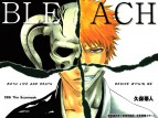 Bleach tv show photo