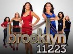 Brooklyn 11223 tv show photo