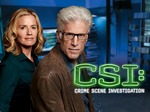 CSI TV Series