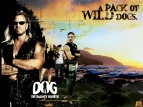 Dog the Bounty Hunter tv show photo