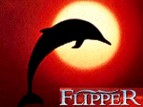 Flipper tv show photo