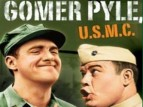 Gomer Pyle, U.S.M.C. tv show photo