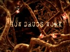 How Drugs Work TV Show
