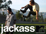 Jackass TV Series