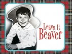 Leave It to Beaver tv show photo