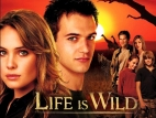 Life is Wild TV Series