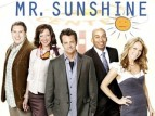 Mr. Sunshine (2010) tv show photo
