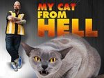 My Cat From Hell tv show photo