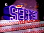My Secret Identity TV Show