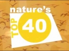 Nature's Top 40 (UK) TV Series
