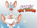 Pinky and the Brain TV Series
