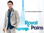 Royal Pains TV Series